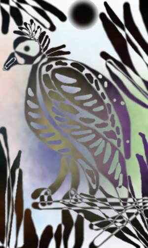 Bird by C. Bailey-Lloyd